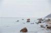 Nur einen Katzensprung zur Ostsee Baugrundstück in Rerik - Ostsee
